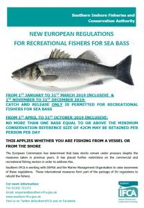 sea bass regulations